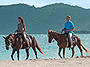 Horseback Riding from Coconut Bay Beach